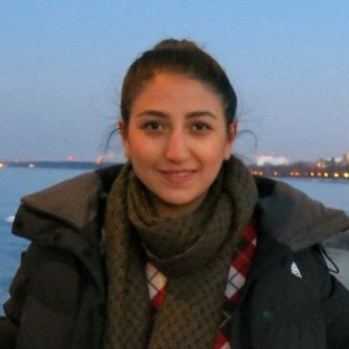 Homa Sarabi